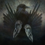 Espírito do corvo Foto de Stock