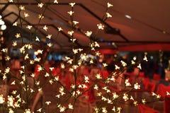 Espírito do feriado em uma imagem feliz Imagens de Stock Royalty Free