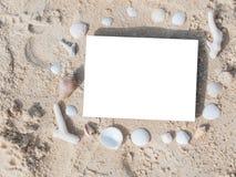 Espaço da cópia da placa do shell da praia do verão do quadro da beira imagens de stock