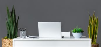 Espaço de trabalho à moda com portátil e plantas em casa fotos de stock