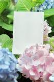 Espaço em branco do papel com flores Fotografia de Stock