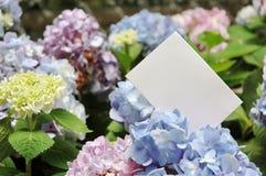 Espaço em branco do papel com flores Fotos de Stock Royalty Free