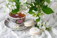 Espaço feminino à moda com as flores brancas da árvore de maçã no vaso Ainda vida minimalistic denominada Foto de Stock Royalty Free