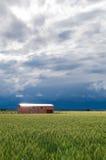España, campos de trigo Imágenes de archivo libres de regalías