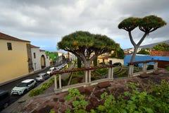 España, islas Canarias, Tenerife, La Orotava fotografía de archivo