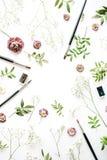 Espace de travail avec des pinceaux et des bourgeons roses Photographie stock libre de droits