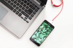 Espace de travail avec l'ordinateur portable et le smartphone de remplissage sur le bureau blanc Smartphone avec l'écran de plant Image stock