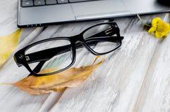 Espace de travail avec l'ordinateur portable, les verres et les feuilles d'automne Photos libres de droits