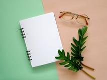 Espace de travail avec le carnet, les lunettes et les feuilles de vert Image libre de droits