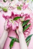 Espace de travail créatif de fleuriste Les mains femelles tenant le beau grand lis rose fleurit sur la table de pastell avec des  Images stock