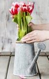 Espace de travail de fleuriste : femme s'chargeant du bouquet des tulipes Image libre de droits