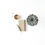 Espace de travail féminin de bureau avec le succulent, le journal intime et les agrafes d'or sur le fond blanc Photos libres de droits