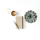Espace de travail féminin de bureau avec le succulent, le journal intime et les agrafes d'or sur le fond blanc Image libre de droits