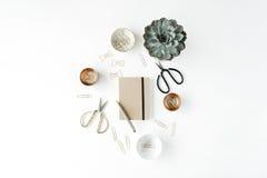 Espace de travail féminin de bureau avec le succulent, les ciseaux, le journal intime et les agrafes d'or Photos stock