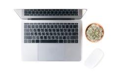 Espace de travail moderne avec le petits cactus et ordinateur portable Photos stock