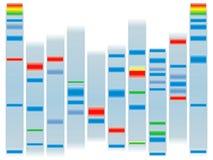 Espace libre d'ADN Images stock