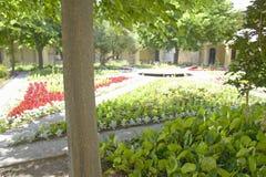 Espace Van Gogh, un centro cultural dedicó a Vincent Van Gogh en el hospital en donde él se recuperó, Arles, Francia Fotos de archivo libres de regalías