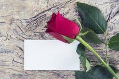 Espace vide pour le message d'amour pour le jour du ` s de Valentine avec la rose de rouge Image stock