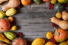 Espace vide vide de cadre de décoration de récolte de potiron d'automne pour le texte de conception Images stock
