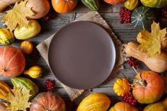 Espace vide vide de cadre de décoration de récolte de potiron d'automne pour le texte de conception avec le plat Images stock
