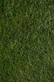 Espacio abierto del golf Imagenes de archivo