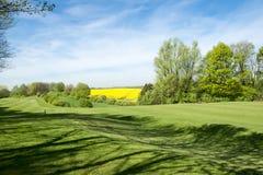 Espacio abierto del golf Imágenes de archivo libres de regalías