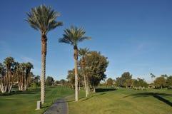 Espacio abierto del golf con el camino y las palmeras del carro Fotografía de archivo