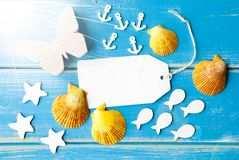 Espacio de la copia del texto de Sunny Summer Greeting Card With fotografía de archivo libre de regalías
