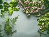 Espacio de trabajo del florista con muchas hojas frescas del verde, flores rosadas y esquileos, endecha plana, marco foto de archivo