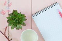 Espacio de trabajo femenino del escritorio con el succulent, los vidrios, la taza para el café y el cuaderno foto de archivo libre de regalías