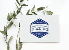 Espacio del diseño de la maqueta de la tarjeta de felicitación Fotografía de archivo