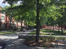 Espacio del verde del centro de Bentley University LaCava foto de archivo