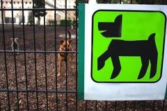 Espacio para los dueños del perro Fotografía de archivo libre de regalías