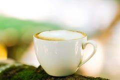 Espacio y taza verdes Imagen de archivo