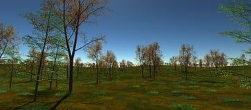 Espacios abiertos con los árboles anaranjados y verdes En el d3ia Fotos de archivo libres de regalías