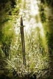 Espada mágica Fotografía de archivo