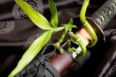 Espada y bambú Imagen de archivo libre de regalías