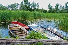Espadaña que refleja en un lago con Lotus hermoso, cuatro botes pequeños Imagen de archivo libre de regalías