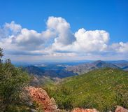 Espadan forest in Castellon stock images