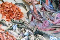 Espadons et d'autres poissons et fruits de mer Photo libre de droits