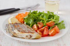 Espadons frits avec de la salade Images stock