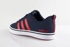 Espadrille de classique d'Adidas Vue supérieure Photo stock