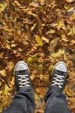 Espadrilles avec les feuilles jaunes autour Image libre de droits