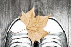 Espadrilles avec une feuille d'automne Photographie stock libre de droits