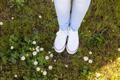 Espadrilles blanches de Pentecôte dans un pré fleuri Photographie stock libre de droits