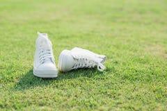 Espadrilles blanches sur l'herbe verte Images stock