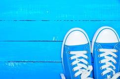 Espadrilles bleues de textile de sport avec les dentelles blanches Image libre de droits