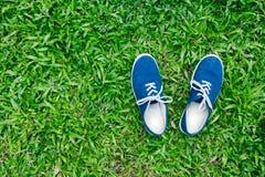 Espadrilles bleues sur l'herbe verte Photo stock