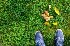Espadrilles bleues sur la pelouse d'herbe verte Photo stock