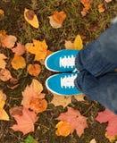 Espadrilles bleues sur les feuilles d'automne Photographie stock libre de droits